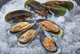 Green Half-Shell Mussels