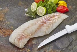 Black Grouper Fillet